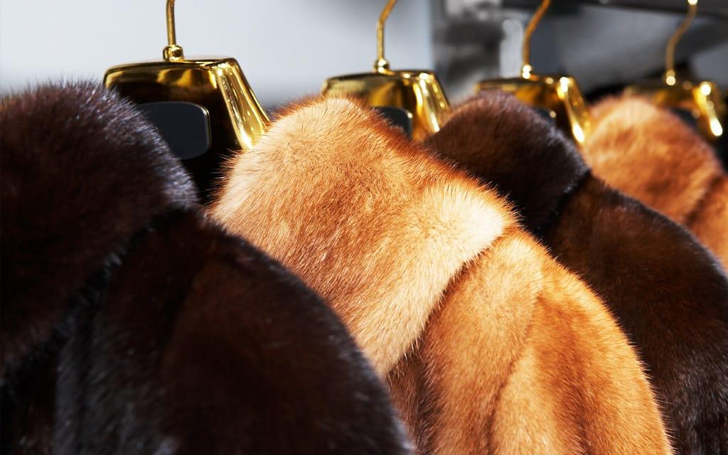 permuta pellicce venezia