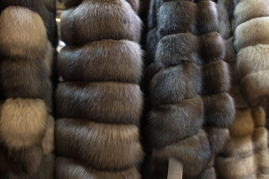 promozione pellicce