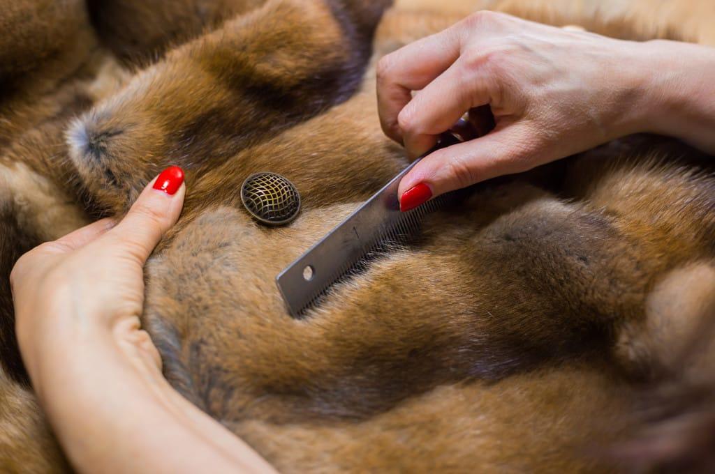 manutenzione pellicce